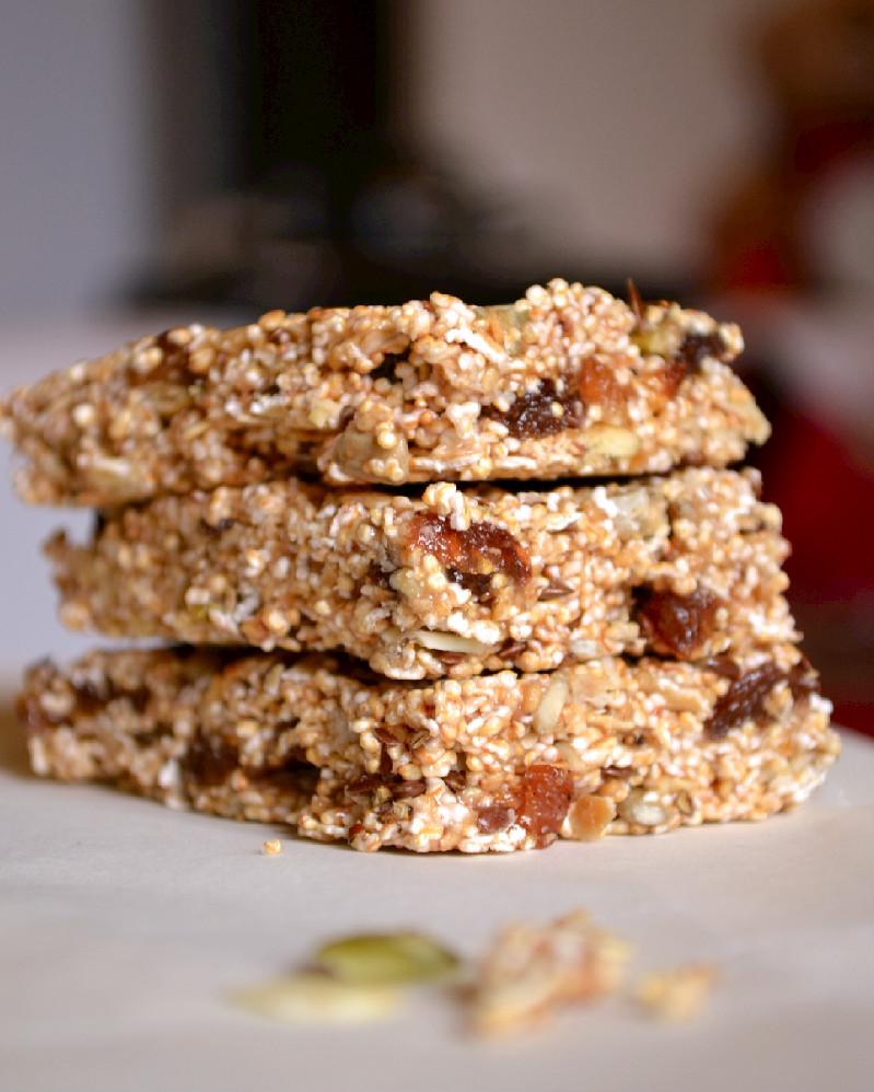 amaranth-oat-granola-bars-dsc_0610